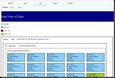 NetApp Premium AutoSupport Visualizations - Raid Tab